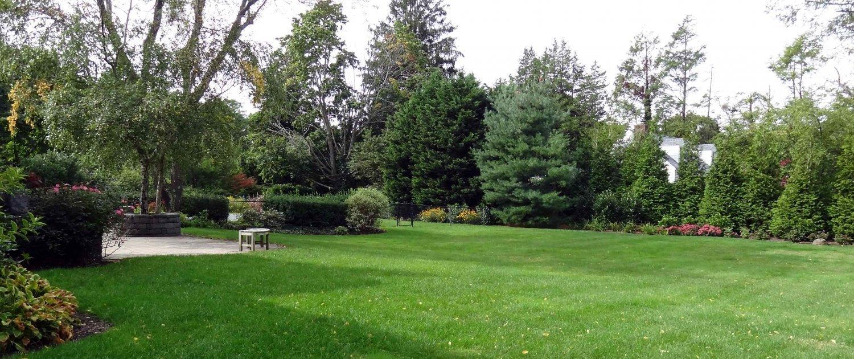 Lawn-Blog2